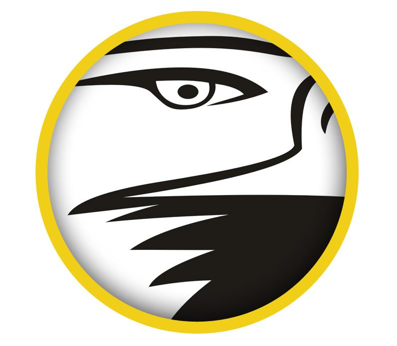 Powiększanie logo wektorowego